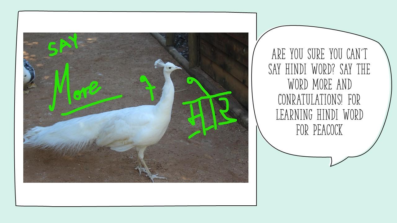 Hindi Magic Words